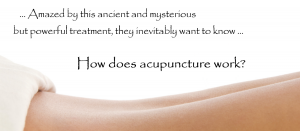 Finney Acupuncture - How Does Acupuncture Work
